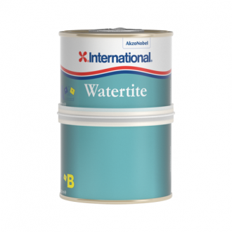 Masilla Epoxi Watertite International